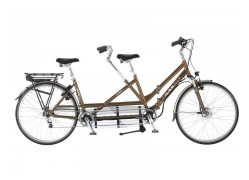 Multicycle Double Dream EF